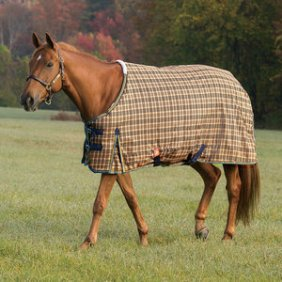 Stable Blanket or Turnout?