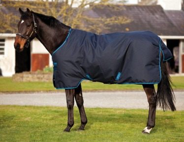 Stable or Turnout Blanket?