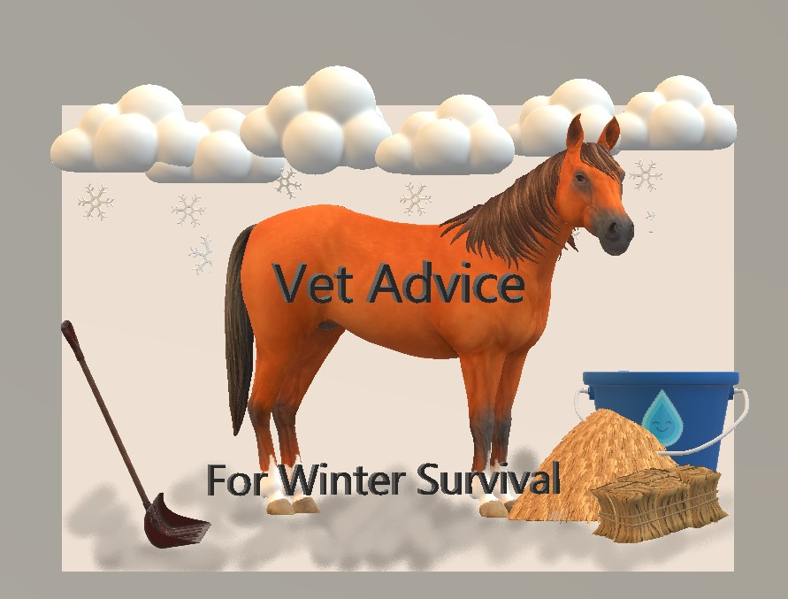 vet advice at Laura's Blanket Repair